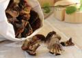 Инструкции, как засушить грибы в домашних условиях